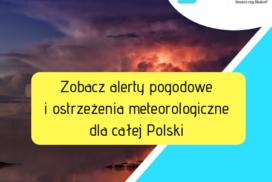 alerty