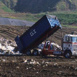 Przestępstwa przeciwko środowisku są sankcjonowane