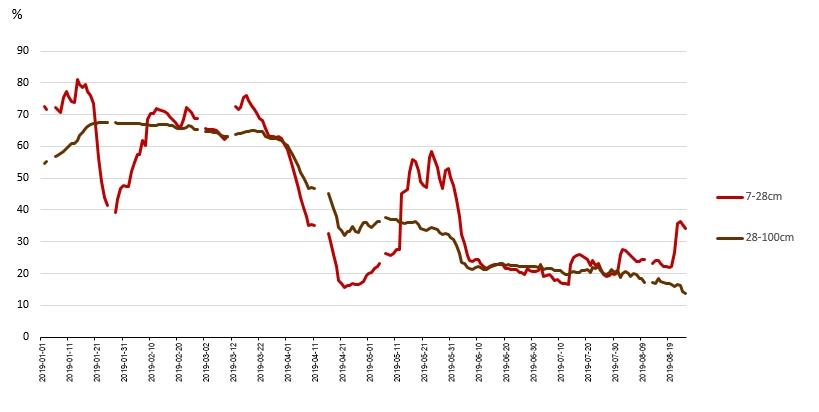 Rys. 12. Przebieg wilgotności gleby od 1 stycznia 2019 r. na dwóch głębokościach na podstawie danych satelitarnych – wartości średnie dla powiatu gostyńskiego