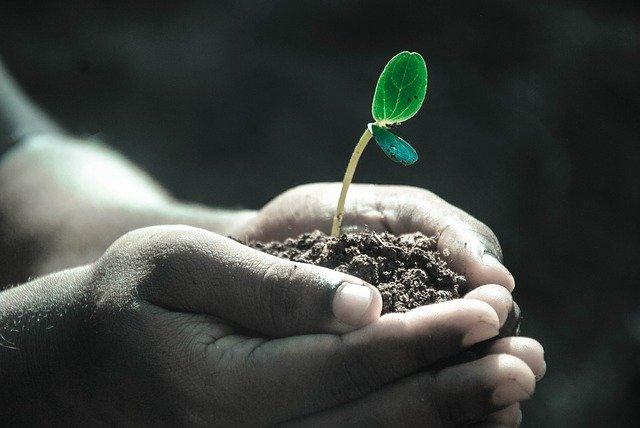 Gleba i powierzchnia ziemi – niedoceniany zasób