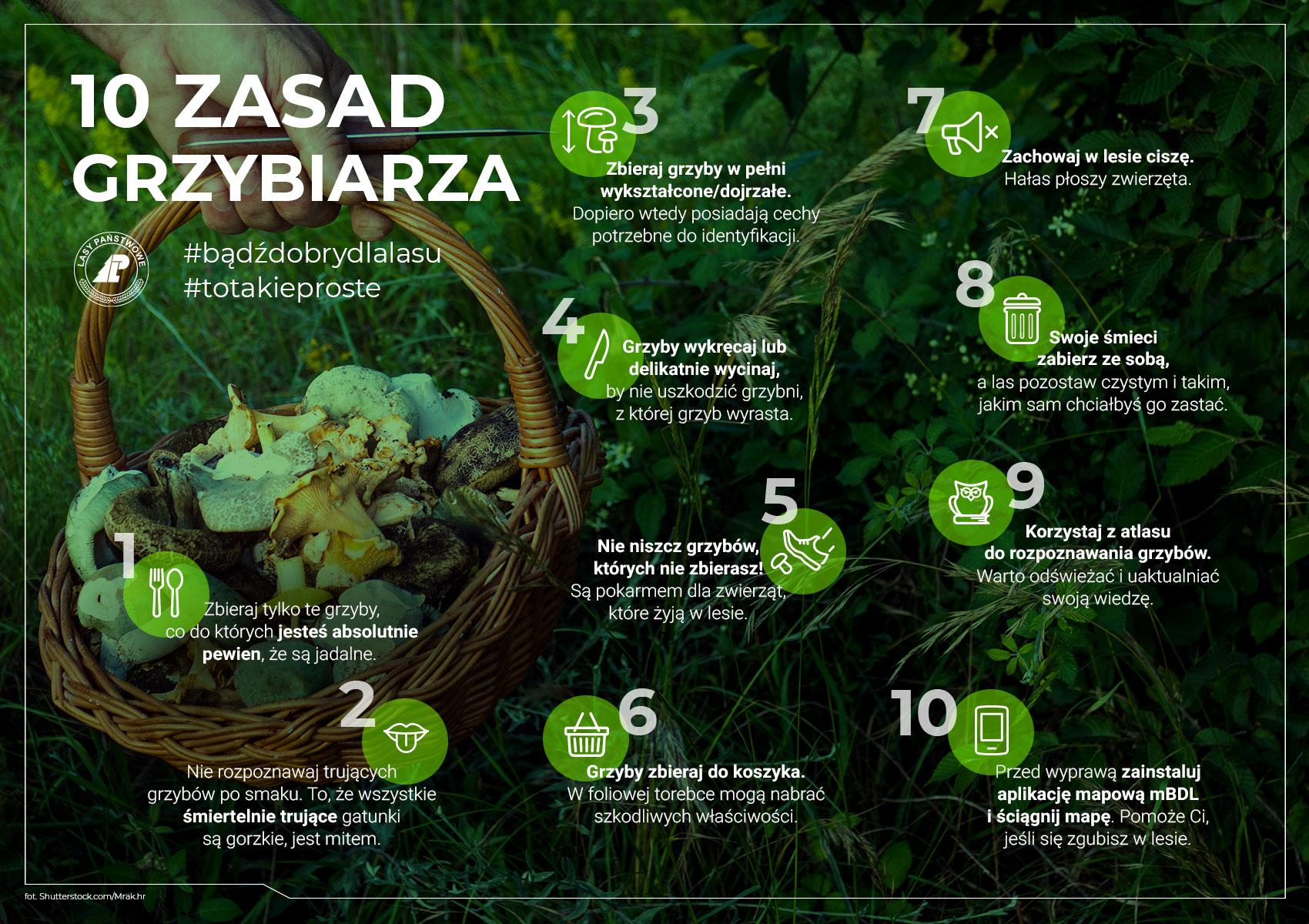 10 zasad grzybiarza