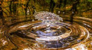 Woda w przyrodzie