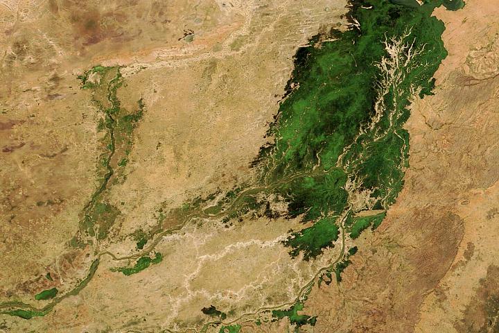 Zalana delta śródlądowa