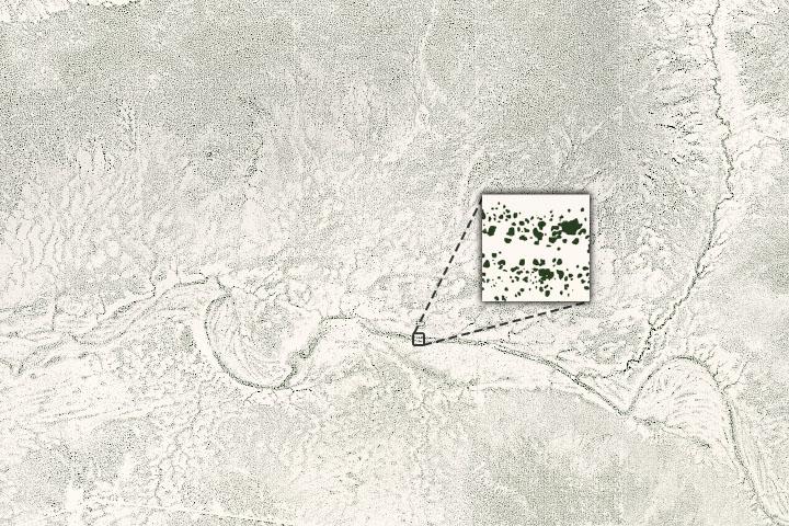 You are currently viewing Liczenie drzew na suchych terenach Afryki