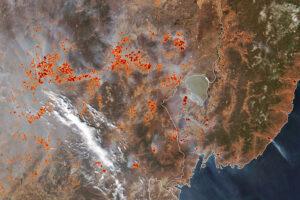 Pożary na Dalekim Wschodzie