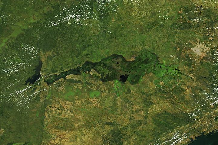 Płaskowyż Kafue w Zambii