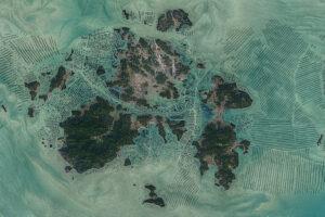 Zielone żniwa w południowokoreańskich wodach