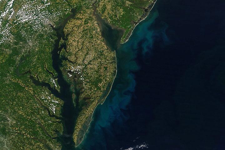 Kwitnący Środkowy Atlantyk