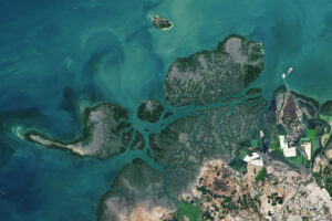 Rafy koralowe w Kutch