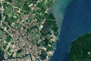 Read more about the article Lasy namorzynowe w Iloilo City