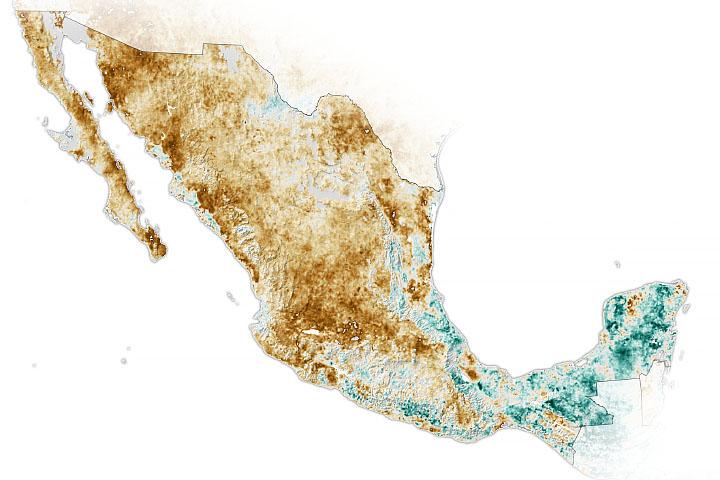 You are currently viewing Rozległa susza w Meksyku
