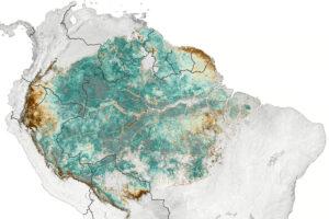 Read more about the article Satelita wyczuwa subtelną sezonowość Amazonii
