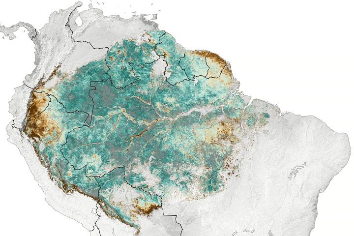 You are currently viewing Satelita wyczuwa subtelną sezonowość Amazonii