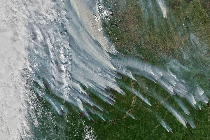You are currently viewing Niezwykły sezon dymnego ognia w Sacha