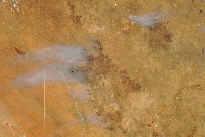 You are currently viewing Szybko poruszający się pożar w Kgalagadi