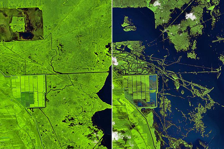 Read more about the article Zmieniony krajobraz w południowej Luizjanie